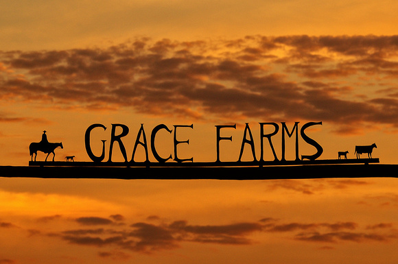 Sunrise at Grace Farms